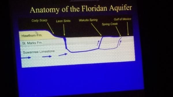 Anatomy of the Floridan Aquifer --Can Denizman