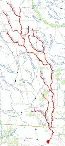 300x670 Alapaha River, Lakeland, Lanier County, GA, Jennings, Hamilton County, FL, in Streamer, by John S. Quarterman, for WWALS.net, 4 July 2014