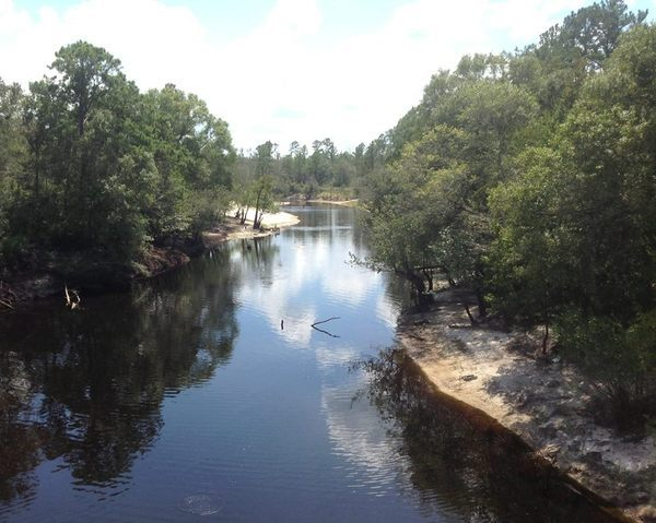 600x479 Alapaha River, in Alapaha River Cleanup @ US 82, by Bret Wagenhorst, for WWALS.net, 27 September 2014