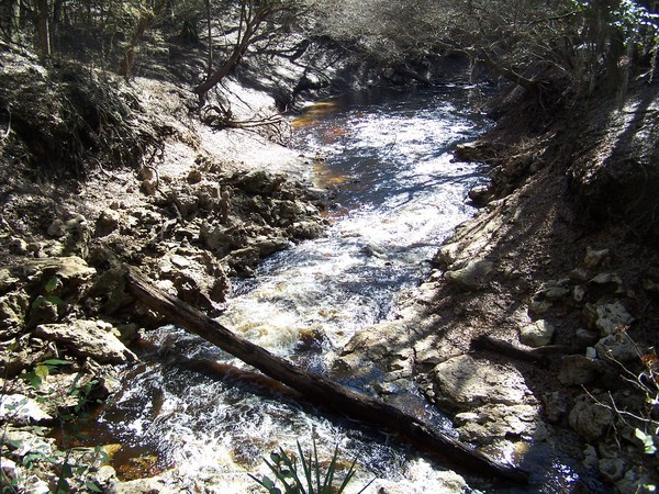 600x450 Alapaha River flowing, in Alapaha Sink, by Chris Mericle, 16 September 2014
