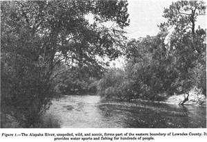 300x205 Alapaha, in oil Survey of Lowndes County, by USDA, for WWALS.net, 0 August 1979