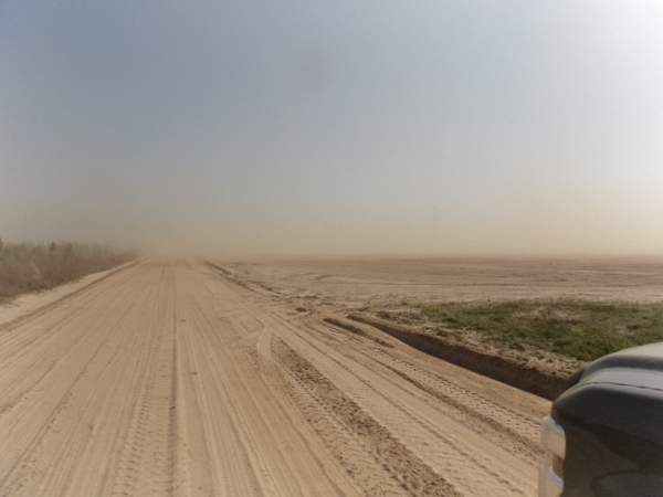 600x450 Dust right up to dirt road, in Dust Storm on Lakeland Sands land in Hamilton County, FL, by John S. Quarterman, for WWALS.net, 25 March 2014