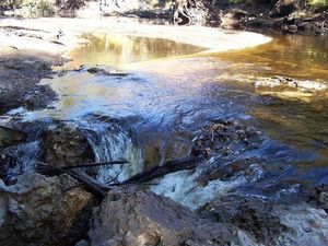 300x225 River and sink, in Alapaha River Sink, by Deanna Mericle, for WWALS.net, 11 November 2014