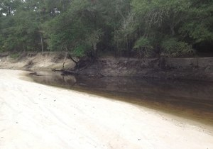 300x210 There is a long sandy beach upstream from the bridge, which is a popular summer hangout for locals., in GA 135 Alapaha River access, by Bret Wagenhorst, for WWALS.net, 14 September 2014