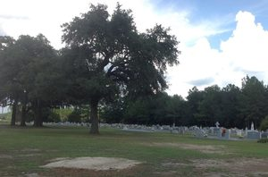 300x198 View of the cemetery to the left of the church from the main road to the church. The access road to the river is on the north end of the cemetery., in Alapaha River access at Riverside Church, by Bret Wagenhorst, 14 September 2014