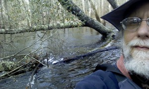 300x180 Obstacle selfie, in Alapaha deadfalls, by John S. Quarterman, for WWALS.net, 17 January 2015