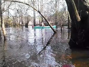 300x225 Movie: Red tannin water (3.5M), in Alapaha deadfalls, by John S. Quarterman, for WWALS.net, 17 January 2015