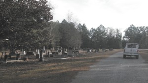 300x169 Rowe Town Church Cemetery, in Alapaha deadfalls, by John S. Quarterman, for WWALS.net, 17 January 2015