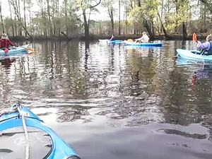 300x225 Movie: Starting at the US 82 bridge (3.4M), in Alapaha deadfalls, by John S. Quarterman, for WWALS.net, 17 January 2015