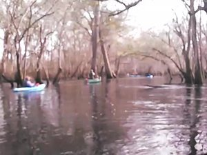 300x225 Movie: Paddling (2.8M), in Alapaha deadfalls, by John S. Quarterman, for WWALS.net, 17 January 2015