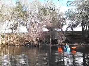 300x225 Movie: Church (2.7M), in Alapaha deadfalls, by John S. Quarterman, for WWALS.net, 17 January 2015