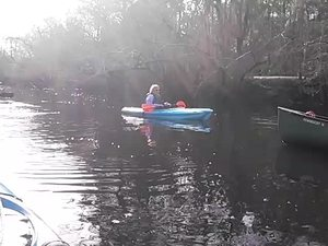 300x225 Movie: Wilkinson Lake (14M), in Alapaha deadfalls, by John S. Quarterman, for WWALS.net, 17 January 2015