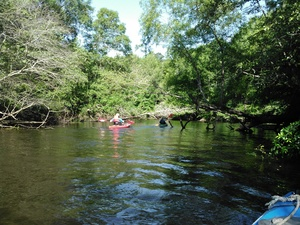 300x225 Paddling downstream, in BIG Little River Paddle Race, by John S. Quarterman, for WWALS.net, 16 May 2015