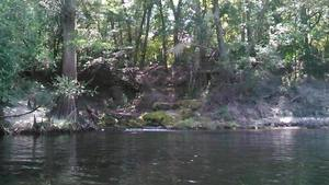 Movie: A spring on the Suwannee River (3.7M) 30.3917084, -83.1683578