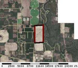 300x263 Parcel: 04-1S-11-1497-000-000, 1272 NE BEULAH CHURCH RD, Lee, FL, in Adams Spring and Bill Gates, by Chris Mericle, for WWALS.net, 13 August 2015