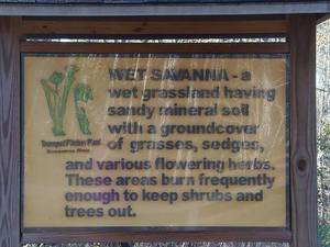 Wet savanna sign
