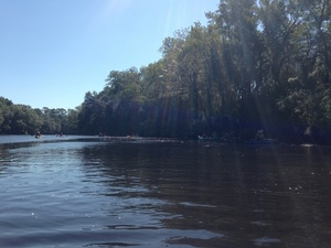 Withlacoochee River 30.4490556, -83.2214056