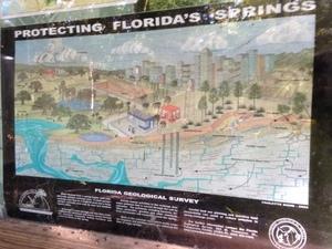 Protecting Floridas Springs 30.3529670, -83.1893790