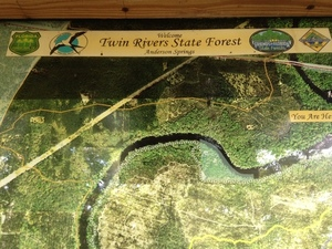 Twin Rivers State Forest 30.3529670, -83.1893790