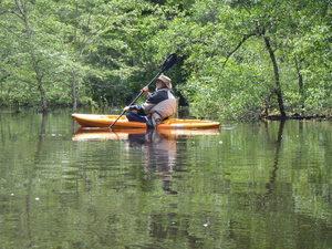 Steering flood plain