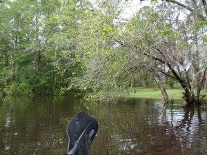Paddle lawn