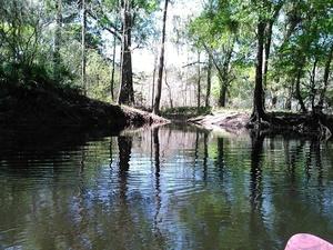 A creek?