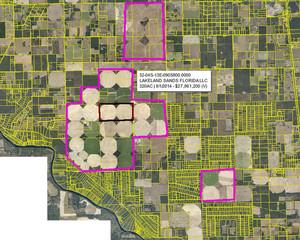 Suwannee Farms, Suwannee River Terra, and Lakeland Sands