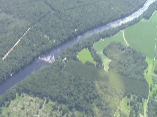 Rapids, Suwannee River, Suwannee Farms