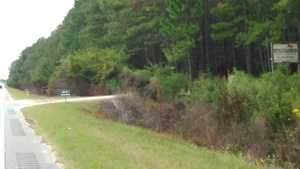 Approved Access Road off US 84, Brooks County, 30.7932470, -83.4587210
