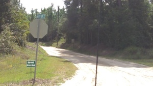 Approved Access Road, Martin Ln., 30.7909450, -83.4438320
