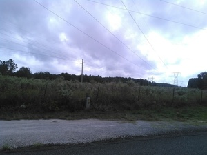Power line, 30.3659250, -83.1774170