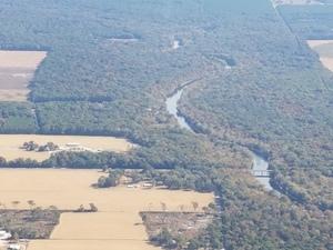 N. HDD Sabal Trail notch in trees at Santa Fe River, 29.9224000, -82.8668980
