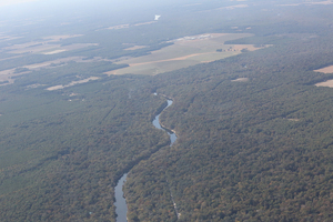 Santa Fe River, Sabal Trail, American Dairy Co., Suwannee River, 29.9339150, -82.8180290