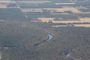 w. to Sabal Trail HDD Santa Fe River, behind trees, 29.9097670, -82.8303050