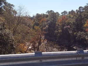 Suwannee River very dry