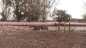Tree stumps and fence destruction