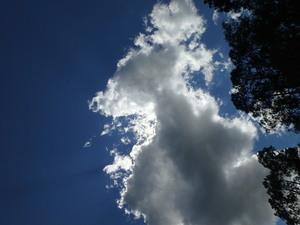Sky 30.5125817, -82.7162983