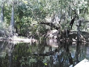 Rocky Creek, 30.5310859, -82.7267303