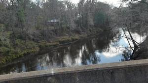 Movie: Withlacoochee River downstream, CR 141 (12M)