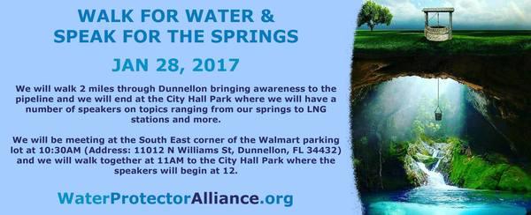 11012 Williams St, Dunnellon, FL 34432-8319