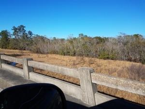 View off overflow bridge 30.6777363, -82.5570832