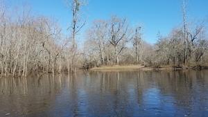 Former river bed? 31.0680910, -83.0515885