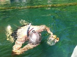Snorkel down 30.6416626, -83.3660889