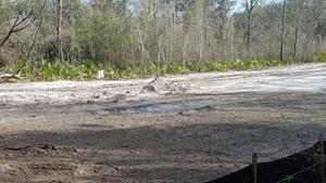 Wet dirt 30.4059161, -83.1527926
