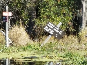 Minnies Lake, Floyds Island, Big Water, Canal Run 30.8347222, -82.3430556