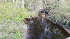 Tiger Creek upstream, Ousley Road, 30.7896038, -83.4277546