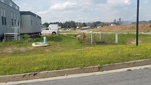 Fire hydrant and MV concrete markers, 30.7611525, -83.5526951