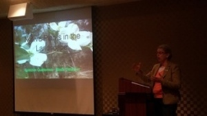 Native Plants in the Landscape, Gretchen Quarterman, Master Gardener