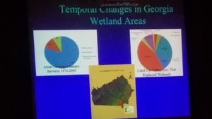 Temporal Changes in Georgia Wetland Areas --Can Denizman