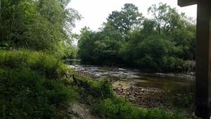 Upstream from under the bridge